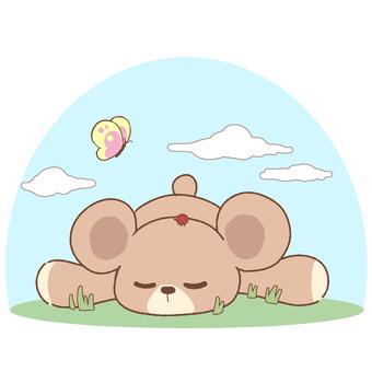 곰 낮잠 2