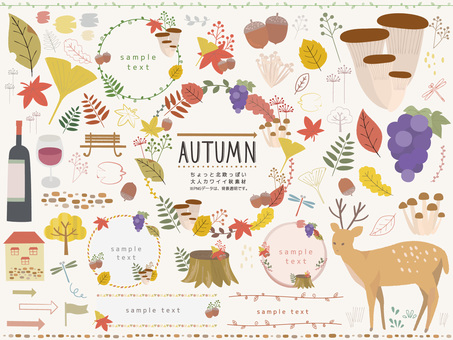 Scandinavian adult cute autumn material set