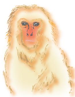 Monkey (CS 5)