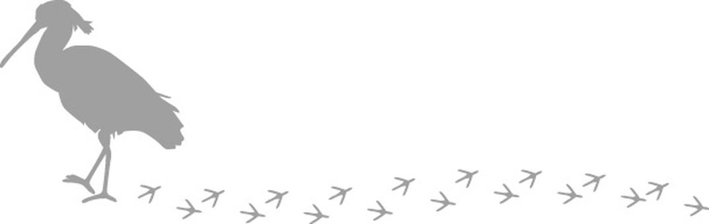 Bird footprint