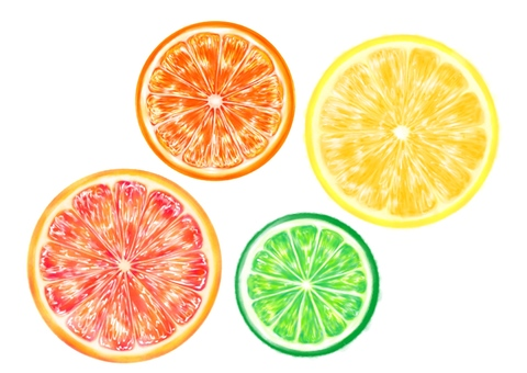 Citrus fruits and citrus fruits