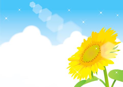 Sunflower and summer sky frame 1