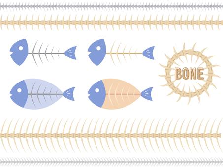 魚の骨セット