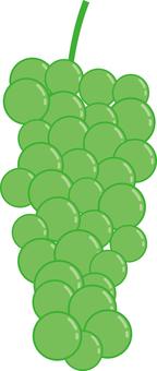 Food Series Fruit Grapes Muscat