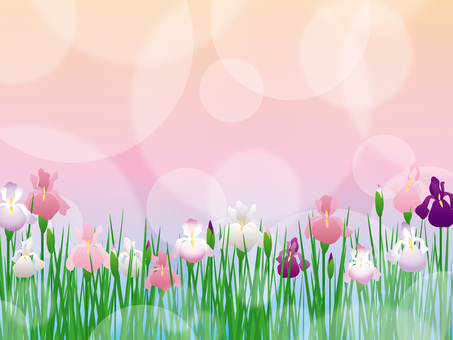 Flower bowl _ Background 01