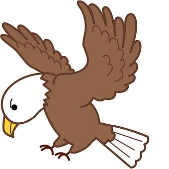 동물 그림 - 독수리, 매