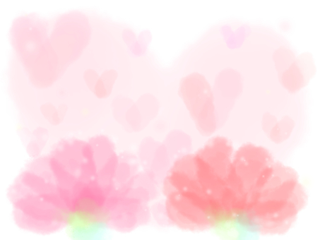 Cute carnation
