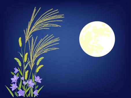 月夜 ススキ 桔梗