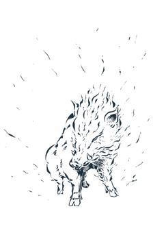 動物-イノシシ