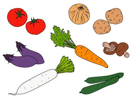 Vegetables (color
