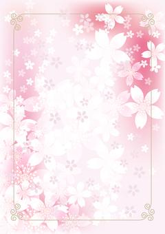 Sakura & Sakura 4