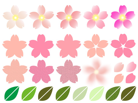Various cherry blossoms
