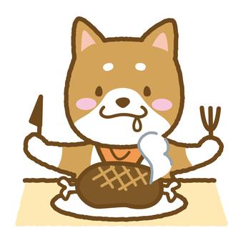 Shiba Inu meal
