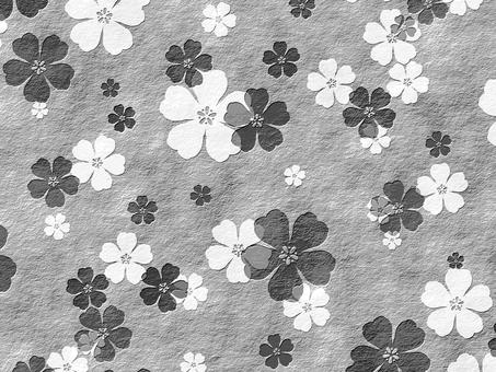 벚꽃 흑백
