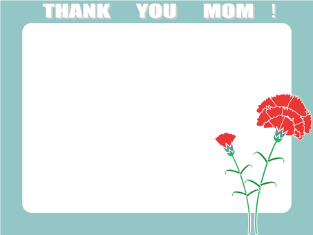花框47_母親節_康乃馨