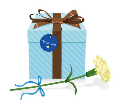 Carnation and gifts blue 01