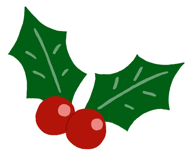 Winter red fruit (Western holly)
