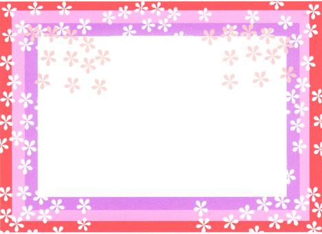 Sakura Frame ①