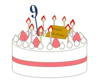 9 year old birthday cake