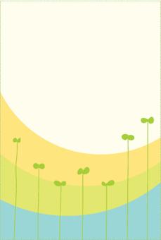 후타바 카드