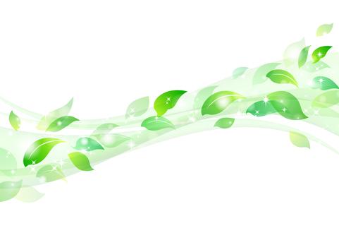 Fresh green material 14