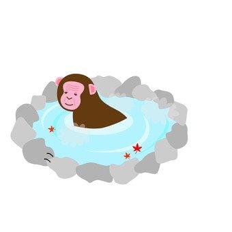 Monkey and open-air bath