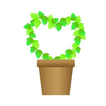 Houseplant - Ivy (Heart type)