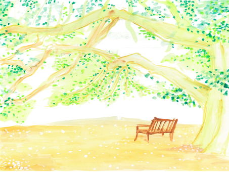 Watercolor Benches placed in the shade of the trees
