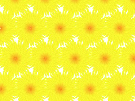 菊のパターンイラスト