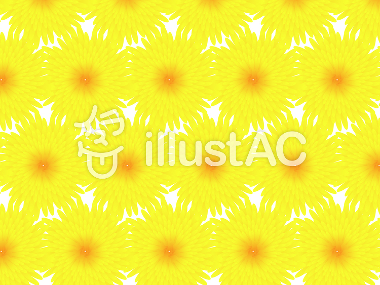 菊のパターンイラストのイラスト