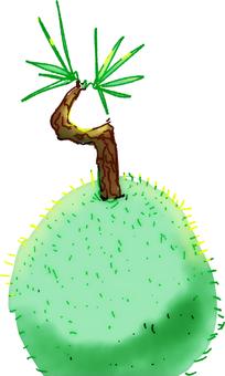 Koketama