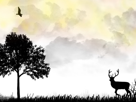 Deers and birds