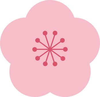 Plum blossom 01