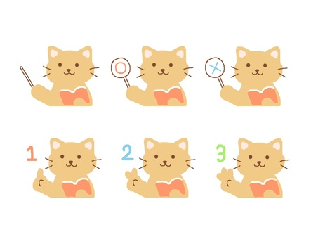 Cat to explain