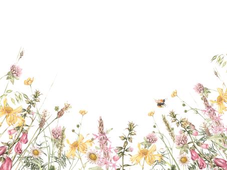 花框架99  - 領域,框架的花框架