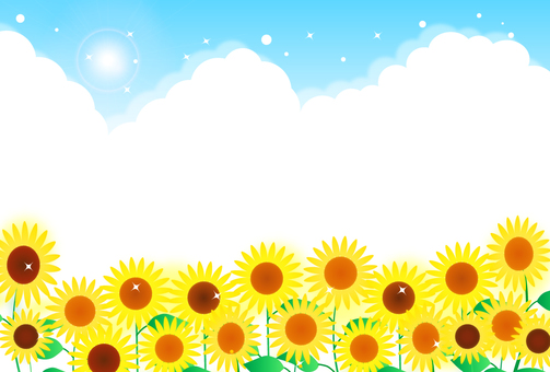 Sunflower in full bloom · blue sky illustration (sideways)