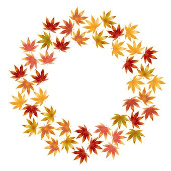 Autumn leaves 104
