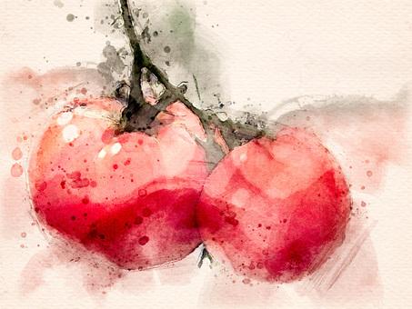 [Watercolor] Tomato