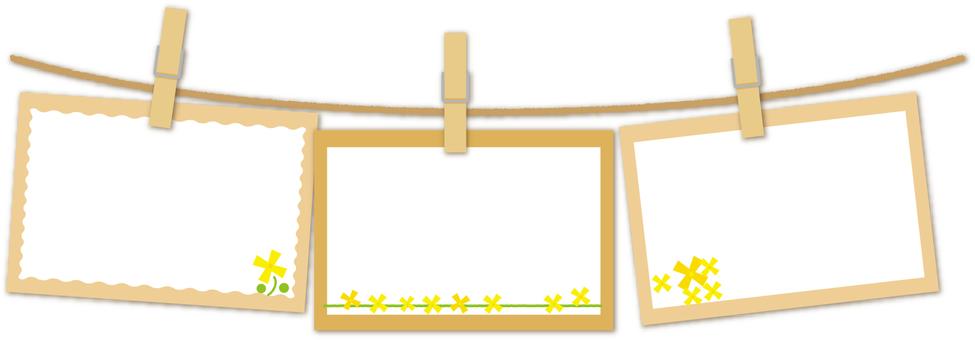 Three rows of rape flower cards