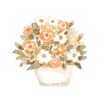 Flower potted plant orange