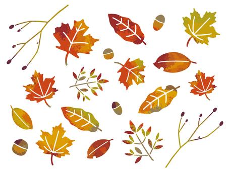 가을 나뭇잎 세트
