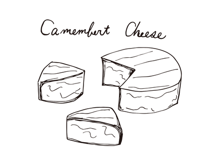 Camembert cheese (line drawing)