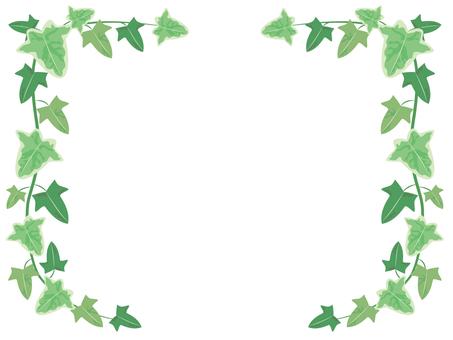 Ivy's frame