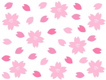 Cherry blossom petals background material
