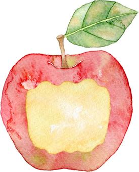 Frame of an apple scar