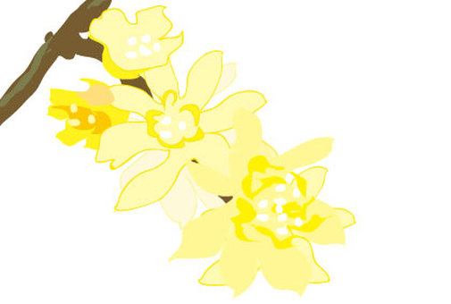 A flower blooming in a Japanese style fancy tree of yellow and white