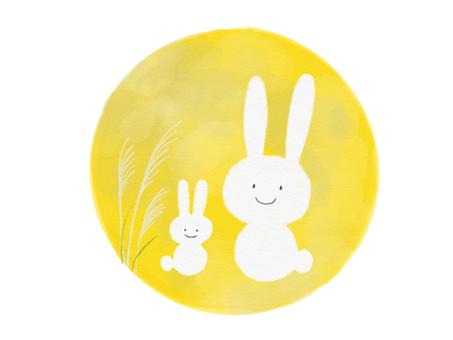 Moon and rabbits