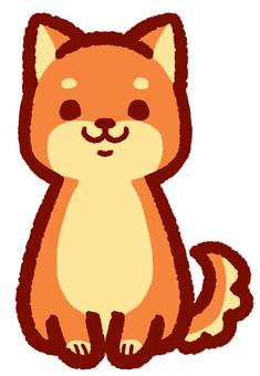 Shiba Inu 1