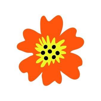 북유럽 풍의 꽃 (오렌지)