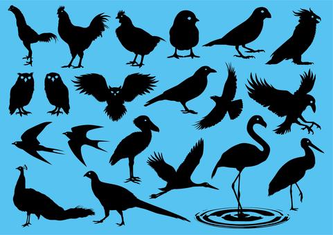 Bird icon set 2